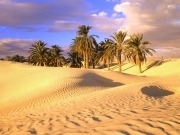 Saharan sun will light European homes by 2016